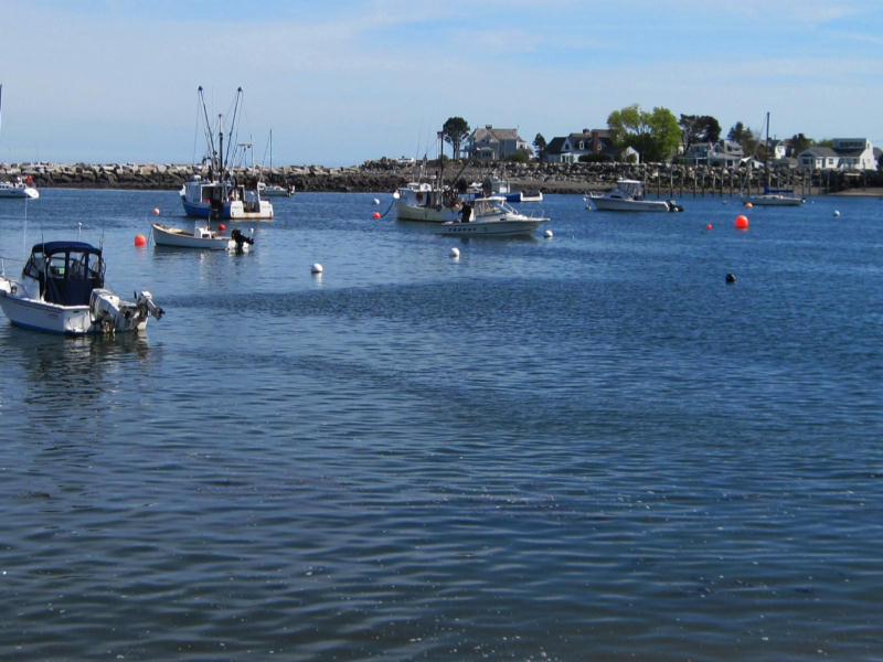 Rye Harbor with several fishing boats floating on the waterfront.